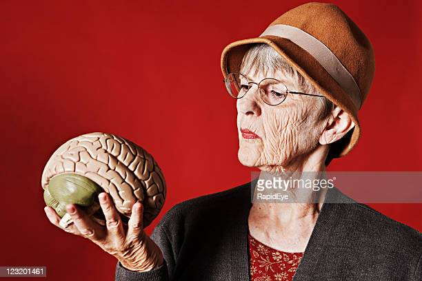 Stern old lady looks at medical model of human brain