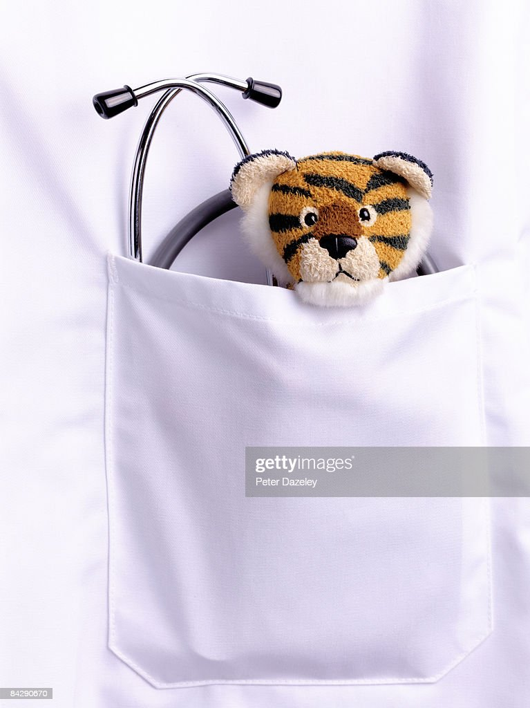 stethoscope and soft toy : Stock Photo