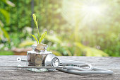 Stethoscope on bottle, coin and plant on wooden background. Concept of financial planning for health care.