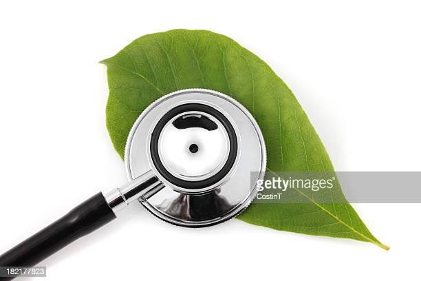 Stethoskop auf green leaf