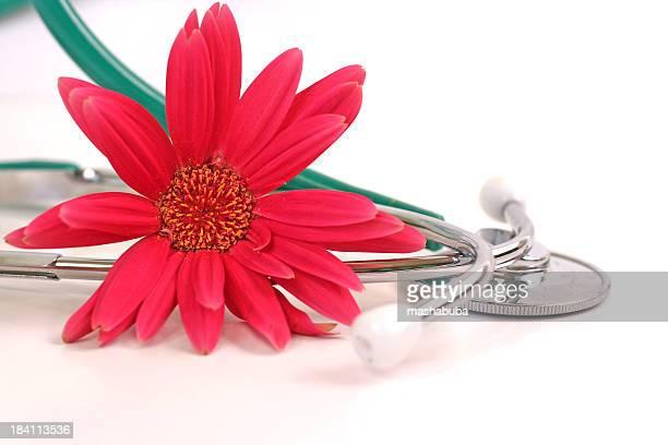 stethoscope-flower 2