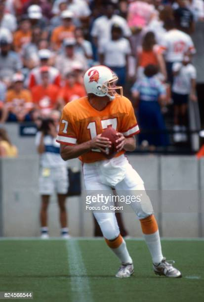 Steve DeBerg of the Tampa Bay Buccaneers drops back to pass against the Atlanta Falcons during an NFL football game September 13 1987 at Tampa...