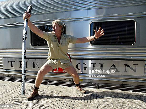 Steve Irwin recognised worldwide as 'The Crocodile Hunter' pretends to wrestle with a snake in the form of a model train at a Sydney launch for a new...