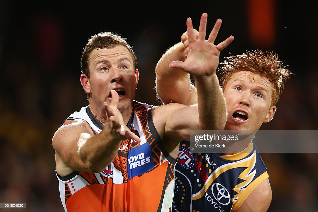<a gi-track='captionPersonalityLinkClicked' href=/galleries/search?phrase=Steve+Johnson+-+Australian+Rules+Footballer&family=editorial&specificpeople=11430122 ng-click='$event.stopPropagation()'>Steve Johnson</a> of the Giants competes for the ball with Kyle Cheney of the Crows during the round 10 AFL match between the Adelaide Crows and the Greater Western Sydney Giants at Adelaide Oval on May 28, 2016 in Adelaide, Australia.
