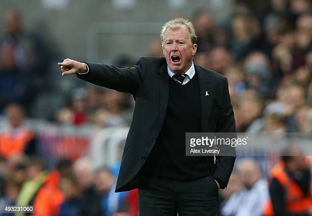 Steve McLaren manager of Newcastle United gestures during the Barclays Premier League match between Newcastle United and Norwich City at St James'...