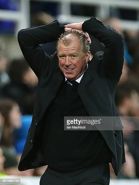 Steve McLaren Newcastle unitedâs manager reacts during the Barclays Premier League match between Newcastle and Aston Villa at St James Park on...