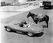 Steve McQueen of the CBS television western 'Wanted Dead or Alive' at CBS Television City Hollywood CA with his horse and his sports car a Jaguar...