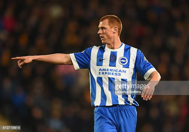 Steve Sidwell of Brighton and Hove Albion looks on during the Sky Bet Championship match between Hull City and Brighton and Hove Albion at KC Stadium...