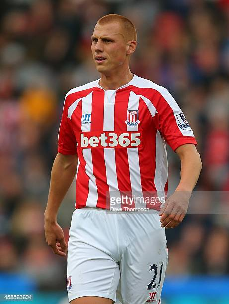 Steve Sidwell of Stoke City during the Barclays Premier League match between Stoke City and West Ham United at the Britannia Stadium on November 1...