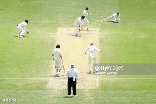 Steve Smith of Australia catches Dawid Malan of England off a delivery by team mate Nathan during day four of the First Test Match of the 2017/18...