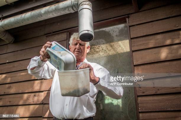 Steven Biggs owner of the Farm's lodge cleans coffee beans from his coffee plantation on October 19 2017 in the British Overseas Territory of Saint...