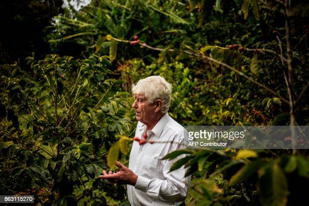 Steven Biggs owner of the Farm's lodge gestures as he talks about his coffee plantation and production on October 19 2017 in the British Overseas...