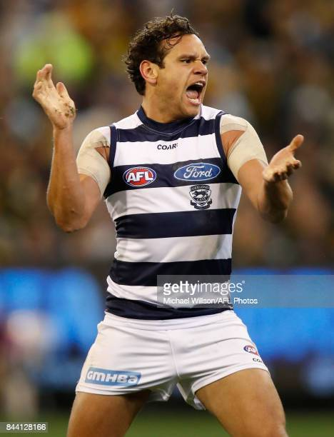 Steven Motlop of the Cats celebrates a goal during the AFL Second Qualifying Final Match between the Geelong Cats and the Richmond Tigers at...