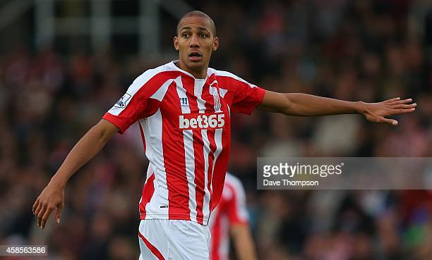 Steven N'Zonzi of Stoke City during the Barclays Premier League match between Stoke City and West Ham United at the Britannia Stadium on November 1...