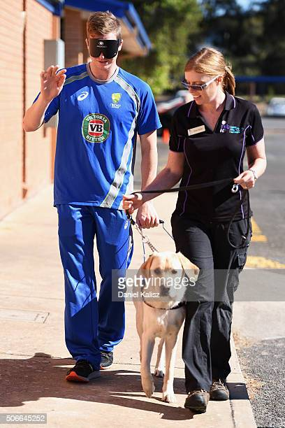 Steven Smith of Australia walks a guide dog during a training session at Gilles Field on January 25 2016 in Adelaide Australia