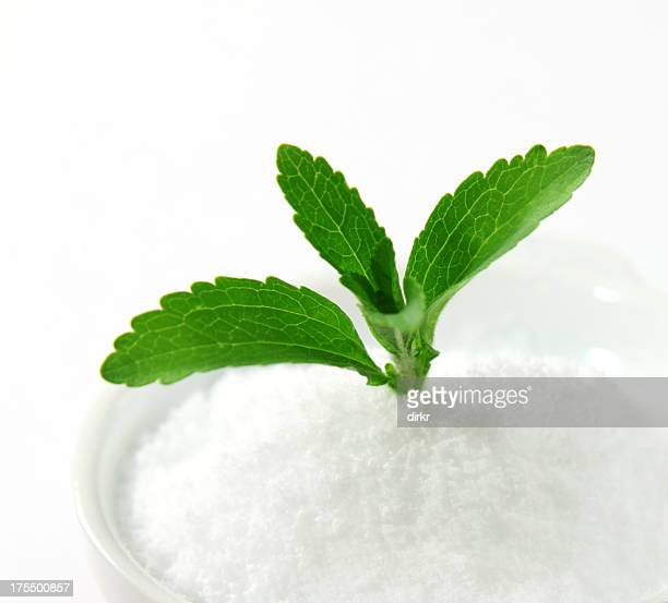 Stevia sprouting out of a white powder