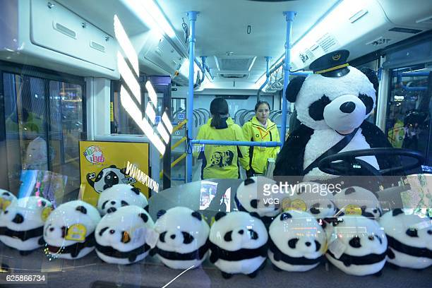 Stewardesses stand in a pandathemed bus on November 25 2016 in Chengdu SIchuan Province of China The pandathemed bus is decorated with panda patterns...