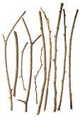 Sticks isolated on white background XXXL