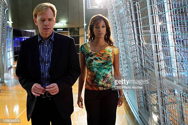'Stiff' The CSIs are led into the sexy world of male gigolos where they uncover an unusual murder weapon on CSI Miami Sunday Oct 2 on the CBS...