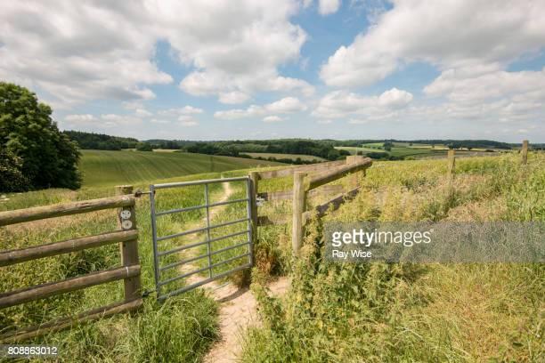 Stile - Gate on public footpath in Buckinghamshire.
