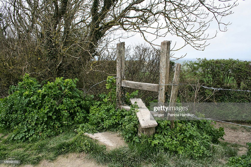 A Stile : Stock Photo