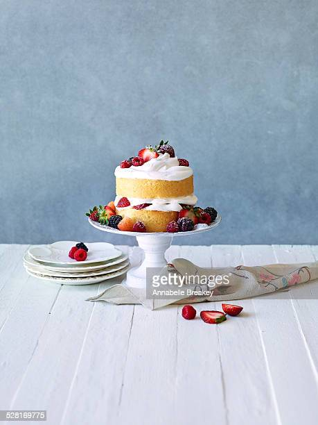 Still LIfe: Berry Cream Layer Cake