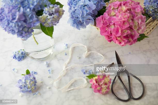 Still life hydrangea flowers