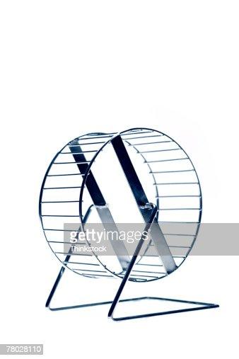 Still life of a hamster wheel.