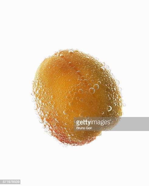 Still life of apricot covered in effervescent bubbles