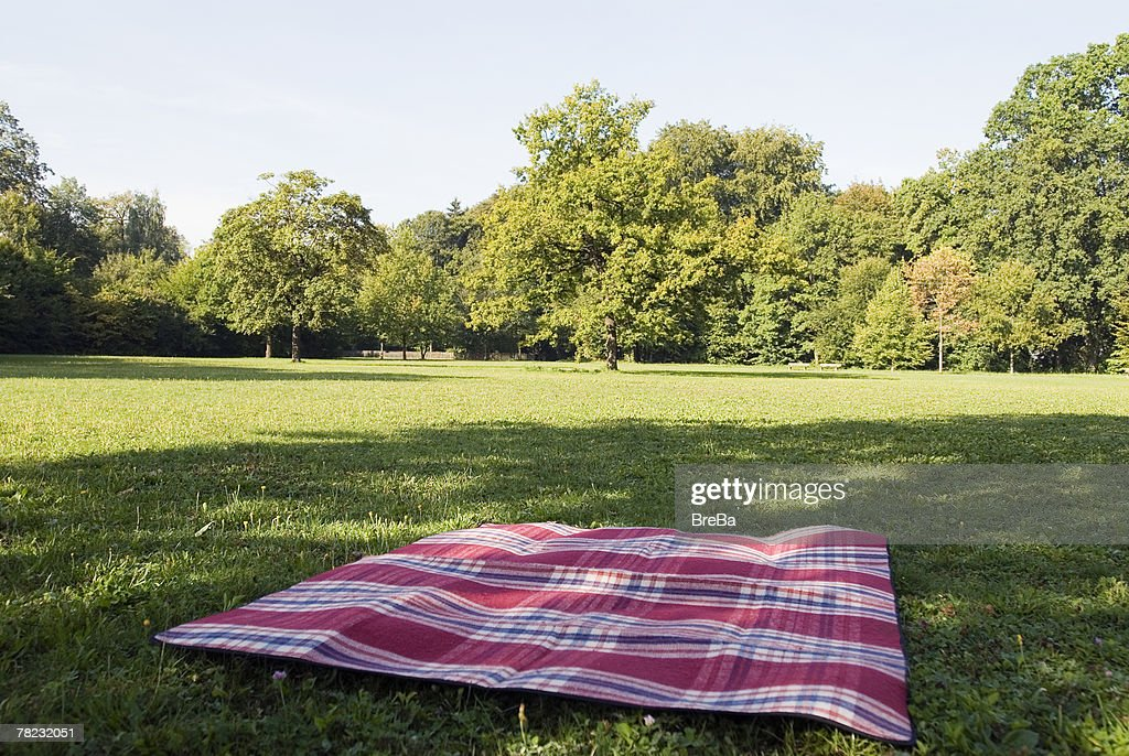 Still Life Of Blanket Lying On Grass In Park Stock Photo