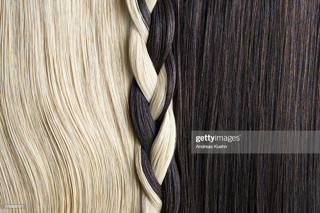 Still life of blond and brown hair, braided. : Stock Photo