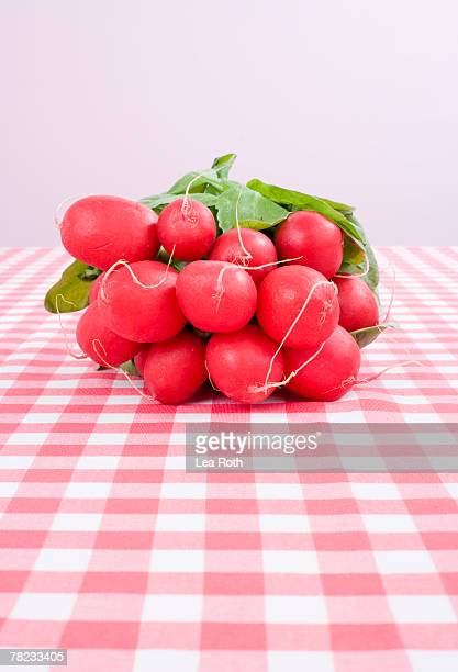 still life of bunch of red radishes