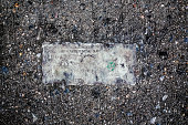 Still life of deteriorating one dollar bill on wet pavement