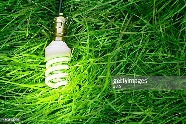 Still life of energy saving lightbulb on grass