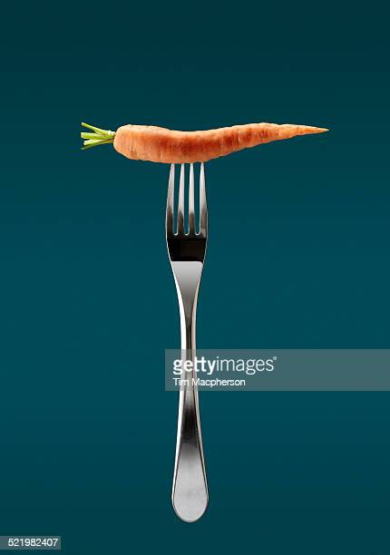 Still life of fresh carrot on top of fork