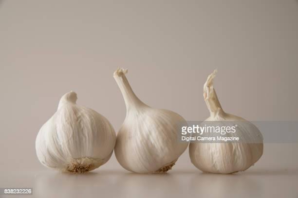 Still life of garlic bulbs taken on May 25 2016