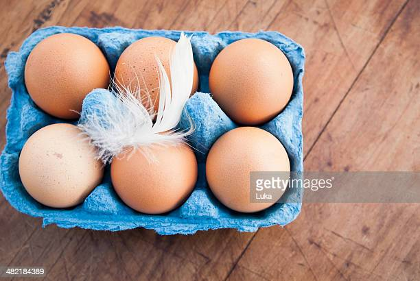 Still life of six brown eggs in blue egg box