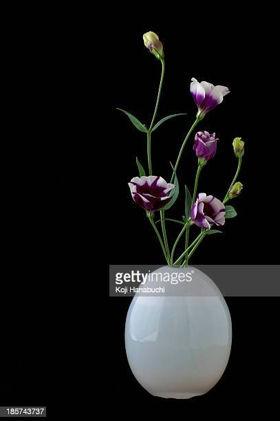 Still life of white vase with purple cut flowers