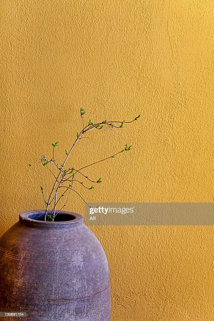 Still life with a terracotta amphora and a branch in front of a yellow wall, Turkey