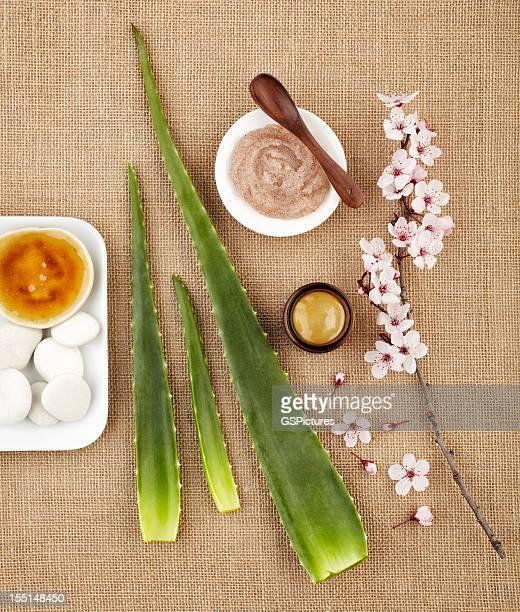 Stillleben mit aloe vera, Honig und Zucker-Peeling und Blume
