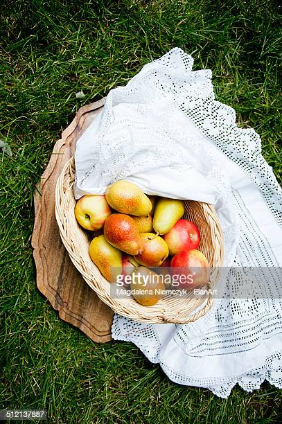 Still life with basket of apples and pears on grass