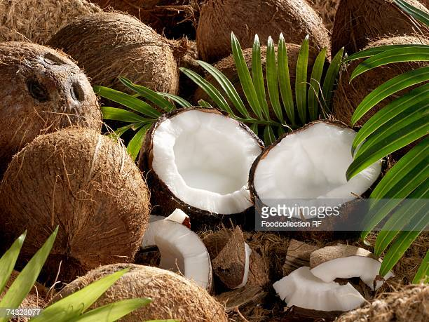 Still life with whole and opened coconuts