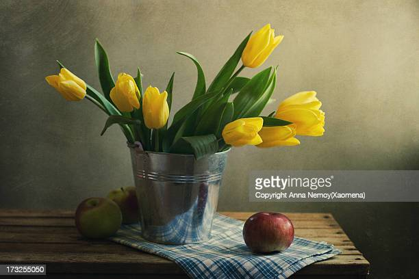 Still life with yellow tulips and apples
