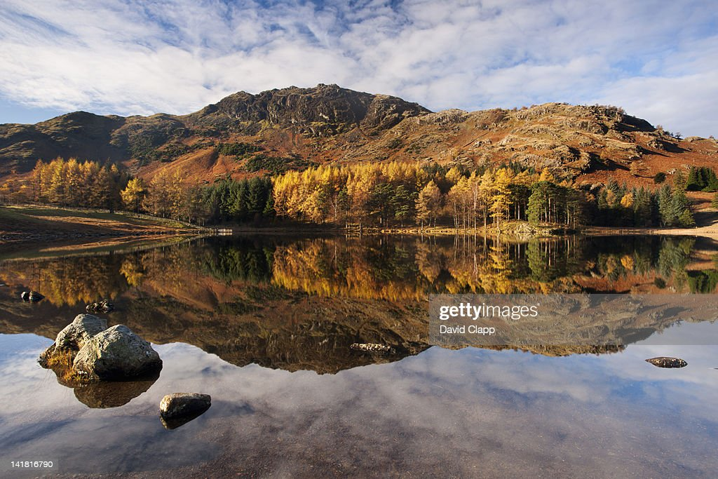 A still morning at Blea Tarn in the Lake District, Cumbria, England, UK