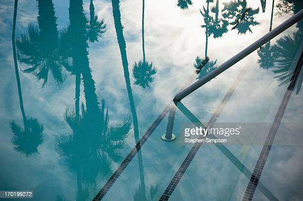 still swimming pool with palm tree reflections