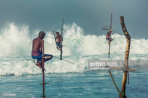 Stilt fishermen of Sri Lanka