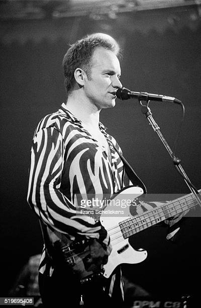 Sting bass and vocals performs at the Paradiso on March 10th 1996 in Amsterdam Netherlands