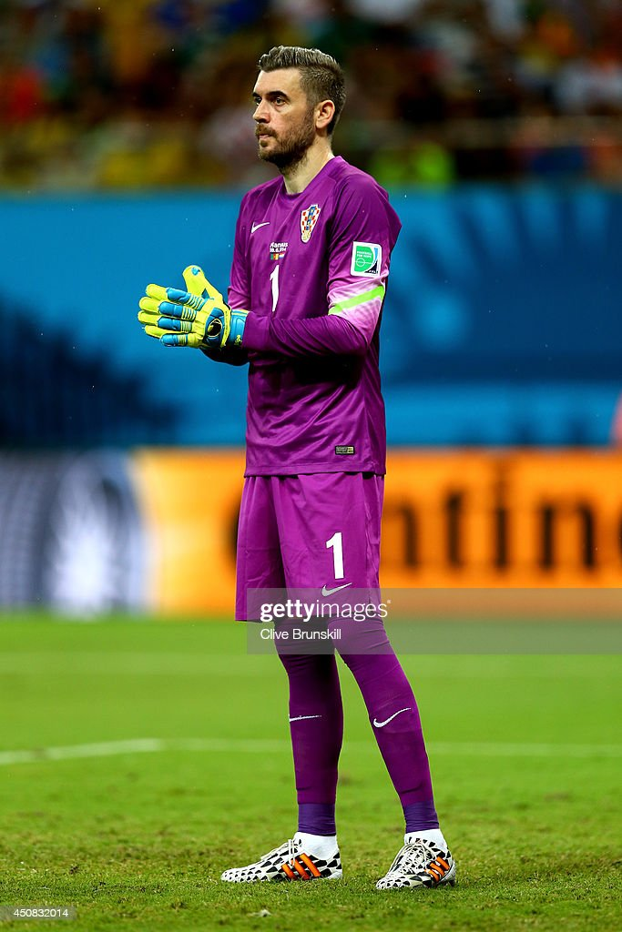 Stipe Pletikosa of Croatia looks on during the 2014 FIFA World Cup Brazil Group A match between Cameroon and Croatia at Arena Amazonia on June 18...