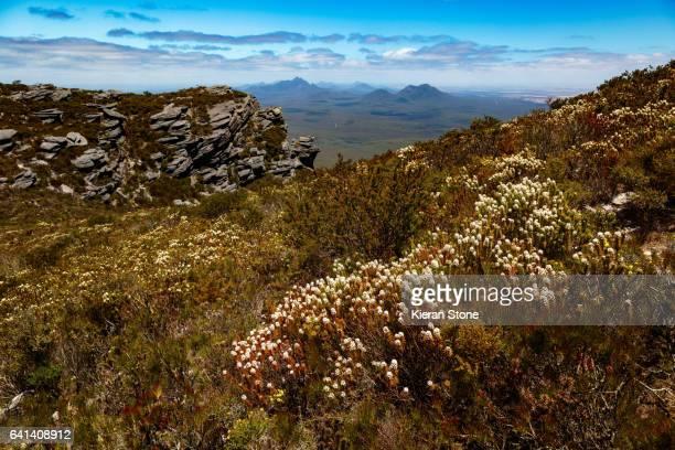 Stirling Ranges National Park landscape