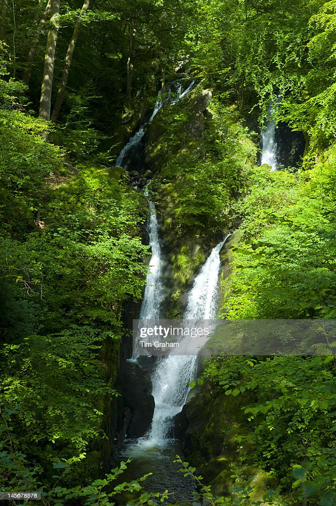 Stock Ghyll Waterfall, The Lake District, UK : Stock Photo